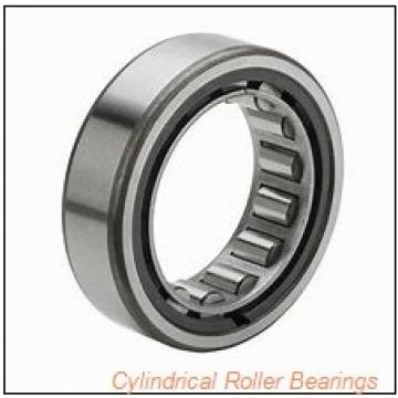 FAG NU2224-E-M1-C3  Cylindrical Roller Bearings