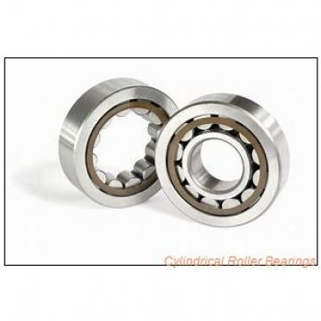 FAG NU2219-E-M1  Cylindrical Roller Bearings